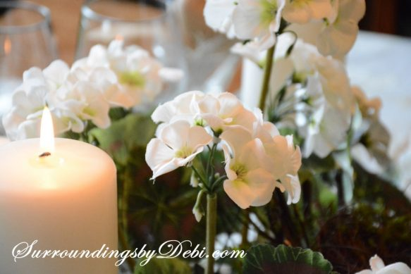 Geraniums-in-Candlelight