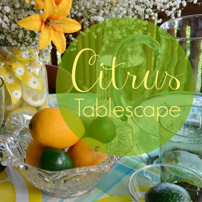 Citrus Tablescape – Enjoying a Summer Afternoon