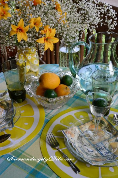 Citrus-Tablescape---Place-Mats