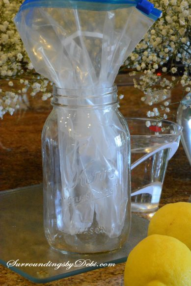 Lemon Vase - Placing the bag