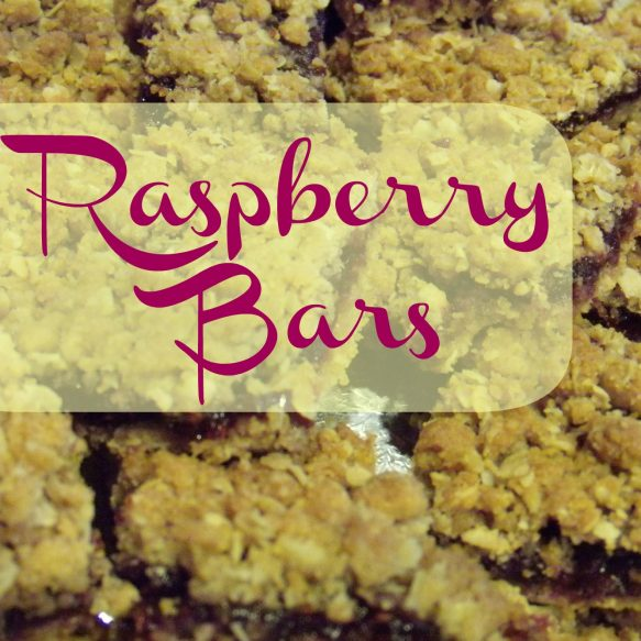 Raspberry-Bars Overlay