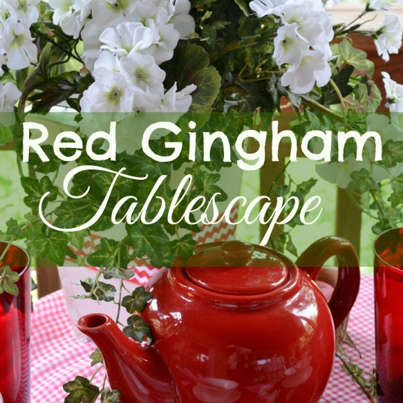 Red Gingham Overlay