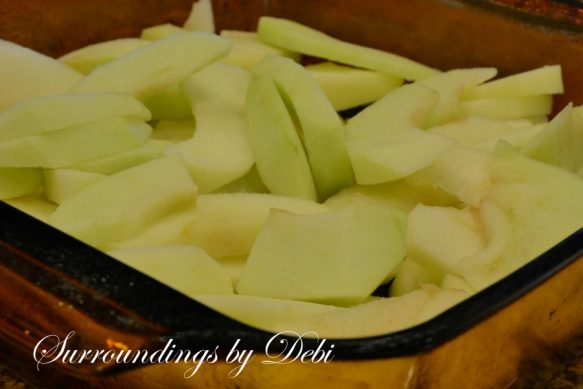 Apple Crisp Slices