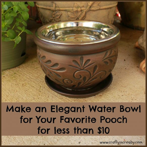 DIY Dog Bowl