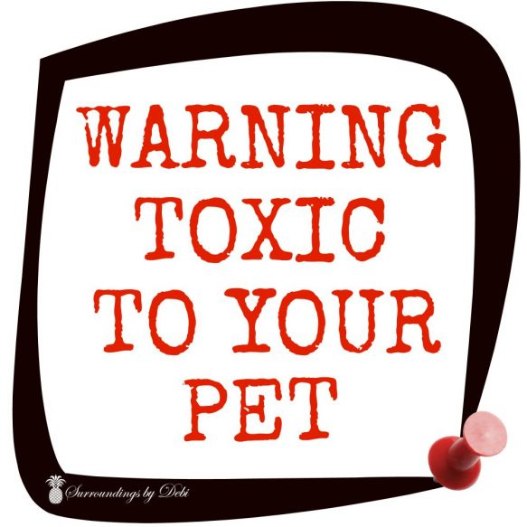 Warning Toxic to Your Pet