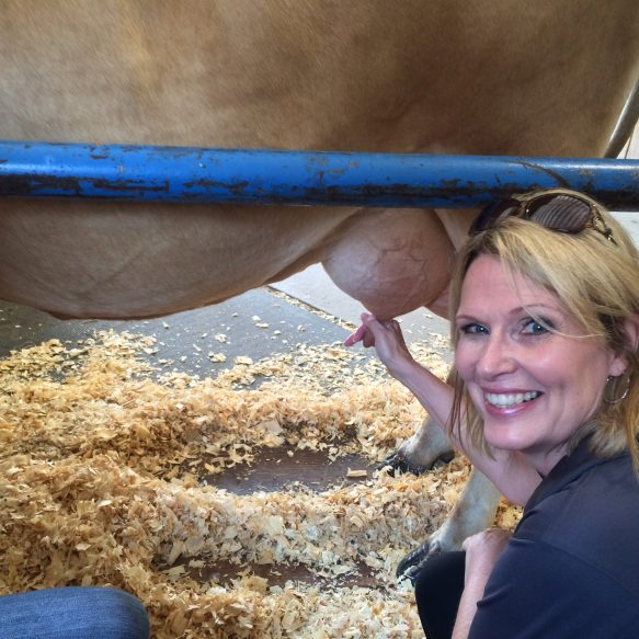 Milking a cow at the State Fair - THursday Favorite Things Blog Hop