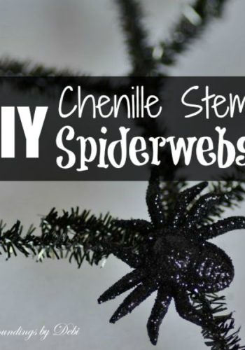DIY Chenille Stem Spiderwebs