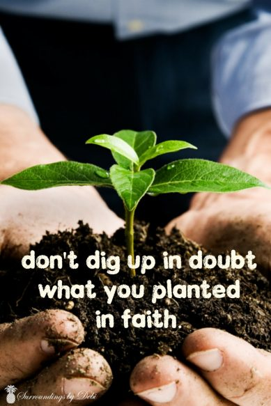Don't dig up in doubt what you planted in faith - Motivation Monday No 4 - Surroundings by Debi