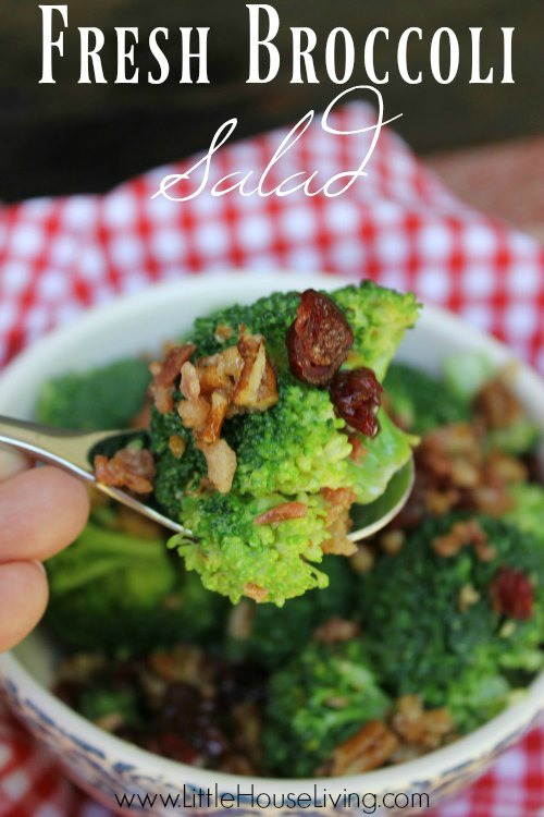 Fresh-Broccoli-Salad-PIN