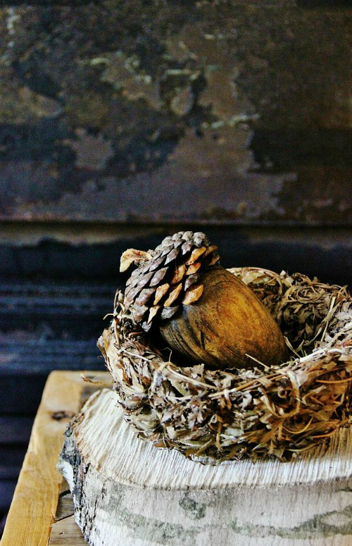 acorn-diy-project-how-to