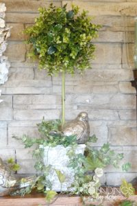 How to Make the Perfect Boxwood Topiary in 5 Easy Steps - Surroundings by Debi